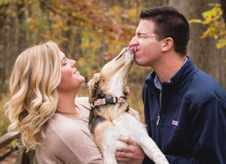 Barrett engagement dog kisses